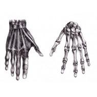 Dłoń i nadgarstek